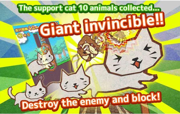 Cat-go-run-3