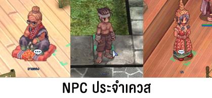 13-npc